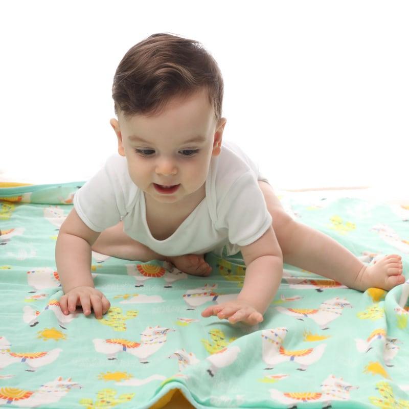 שמיכת טטרה לתינוק - דגם למה סטייל